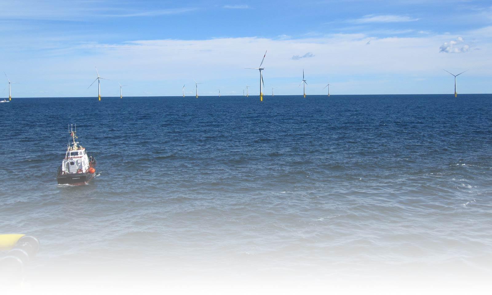 Windforce matchmaking